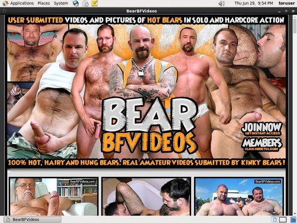 Bear BF Videos Discount Coupon